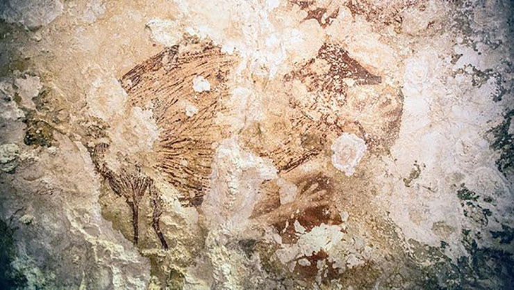 cave paintings from a cave in Southeast Asia